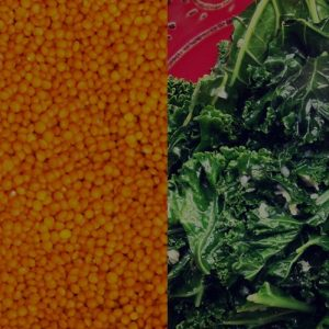 Close up of red lentils and kale