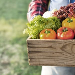 Person holding a box full of fresh produce