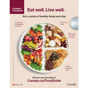 Cover image of Canada's food guide